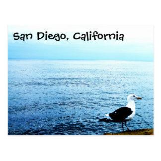 Océan de bleu de San Diego la Californie d'oiseau Carte Postale