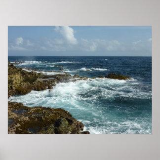 Océan rocheux de bleu de la côte d'Aruba Poster