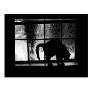 Octobre verse la silhouette de chat à la fenêtre 2 carte postale