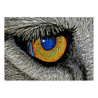 Oeil de lions, affiche réaliste carte de visite