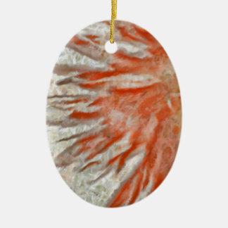 Oeil de marguerite de Gerbera Ornement Ovale En Céramique