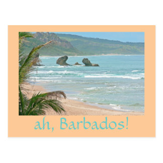 """""""oh, les Barbade !"""" carte postale (photog. paysage"""