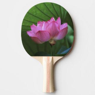 Ohga Lotus, Sankei-en jardin, Yokohama, Japon Raquette De Ping Pong