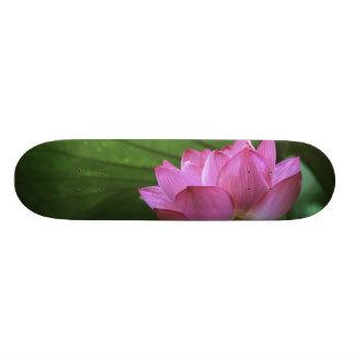 Ohga Lotus, Sankei-en jardin, Yokohama, Japon Skateboard 20,6 Cm