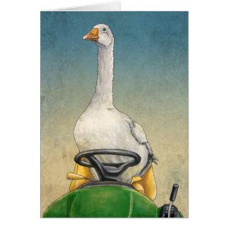 Oie d'Embden sur des cartes de tracteur