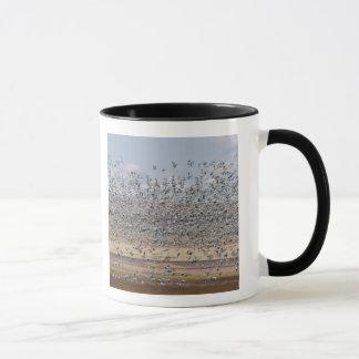 Oies de neige pendant la migration 3 de ressort mug