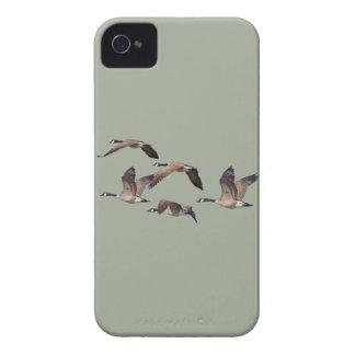 Oies en vol coques iPhone 4