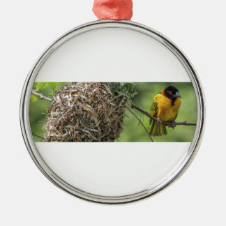 Oiseau africain et son nid d'herbe ornement rond argenté