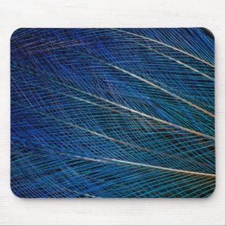 Oiseau bleu des plumes de paradis tapis de souris