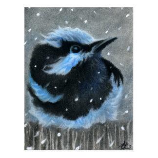 Oiseau bleu en CARTE POSTALE de neige