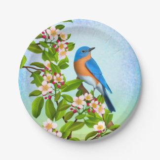 Oiseau bleu oriental dans des plaques à papier de assiettes en papier