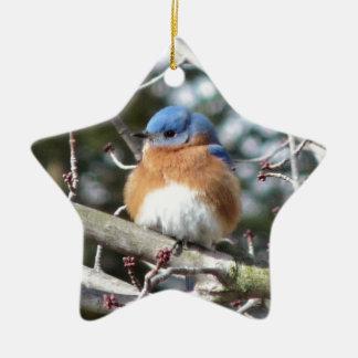 Oiseau bleu ornement étoile en céramique