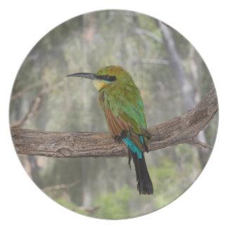 Oiseau d'abeille-mangeur d'arc-en-ciel, Australie Assiettes En Mélamine