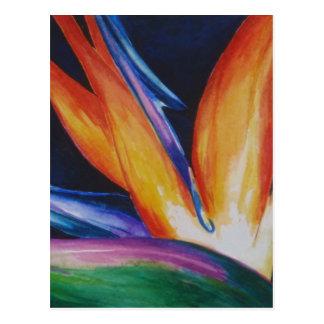 Oiseau d'art d'aquarelle de paradis cartes postales
