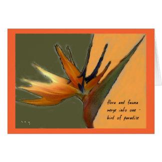 Oiseau de carte de paradis