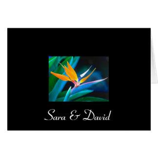 Oiseau de carte de remerciements de paradis
