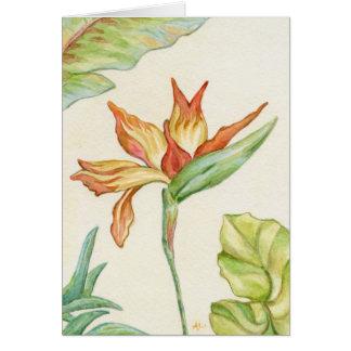 Oiseau de carte pour notes de fleur de paradis