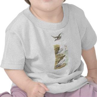 Oiseau de fulmar t-shirt