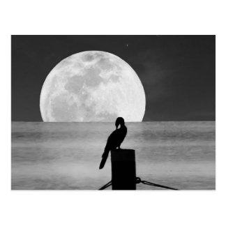 Oiseau de lac et carte postale de pleine lune