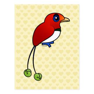 Oiseau-de-paradis de roi de Birdorable Carte Postale