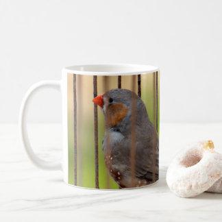 Oiseau de pinson de zèbre dans la cage mug