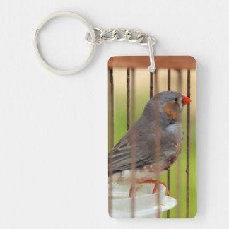 Oiseau de pinson de zèbre dans la cage porte-clé  rectangulaire en acrylique une face