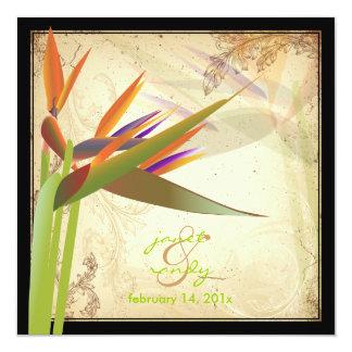 OISEAU de PixDezines du PARADIS VINTAGE Carton D'invitation 13,33 Cm