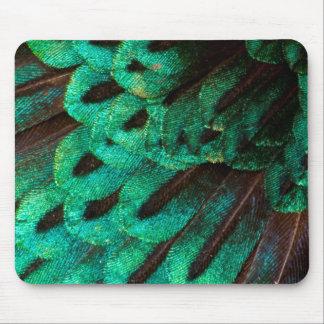 Oiseau de plan rapproché de plume de paradis tapis de souris