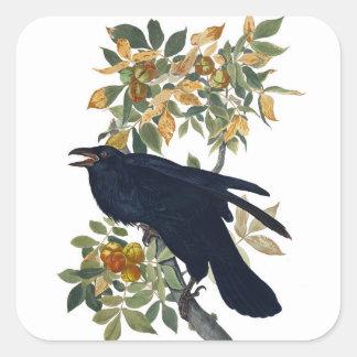 Oiseau de Raven Sticker Carré