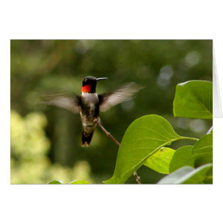 Oiseau de ronflement carte de vœux