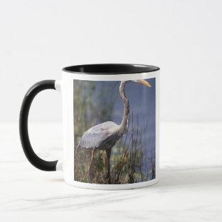 Oiseau d'eau de héron de grand bleu trouvé partout tasse