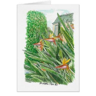 Oiseau des fleurs de paradis carte de vœux