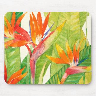 Oiseau des fleurs | du paradis tropical tapis de souris