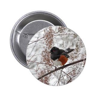 Oiseau d'hiver dans la neige badges avec agrafe
