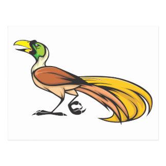 Oiseau du paradis fâché carte postale