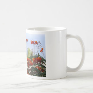 Oiseau du paradis mexicain mug