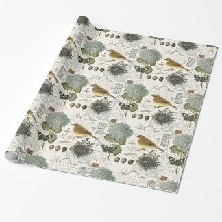 oiseau et nid français vintages modernes papier cadeau