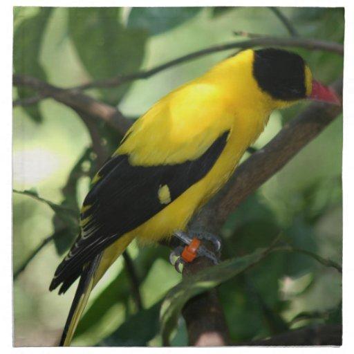 Oiseau jaune et noir lumineux dans l 39 arbre serviette en for Oiseau jaune et noir