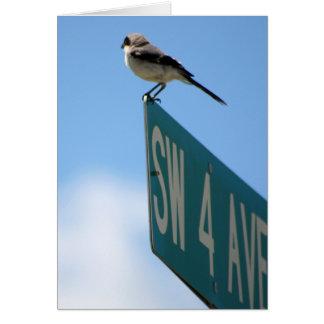 Oiseau sur la 4ème avenue. carte