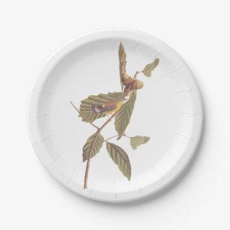 Oiseau vintage de fauvette de magnolia d'Audubon Assiettes En Papier