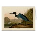 Oiseaux bleus de héron de grue d'Audubon de l'Amér Carte De Vœux