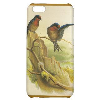 Oiseaux Étui iPhone 5C