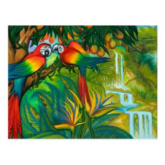 Oiseaux de carte postale de paradis