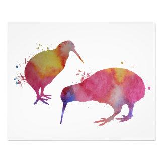 Oiseaux de kiwi impression photo