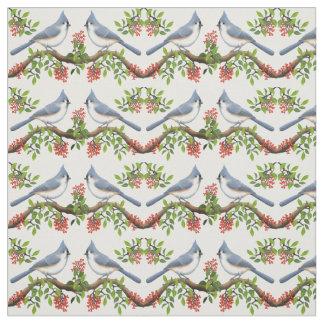 Oiseaux de mésange tuftée avec le tissu de baies