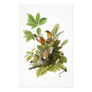 Oiseaux de Robin John James Audubon d'Américain de Papeterie