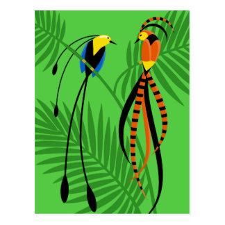 Oiseaux du paradis colorés lumineux carte postale