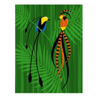 Oiseaux du paradis colorés lumineux cartes postales
