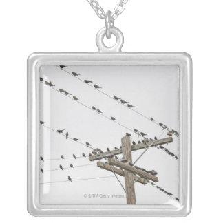 Oiseaux étés perché sur des fils pendentif carré