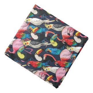 Oiseaux exotiques bandanas